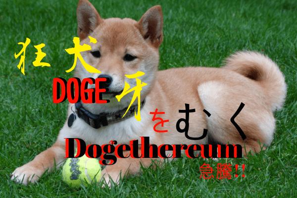 Dogethereumについて調べた記事のアイキャッチです